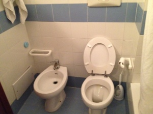 the other bathroom complete with bidet