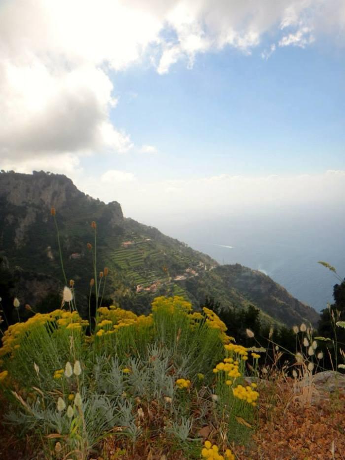 13 scenery